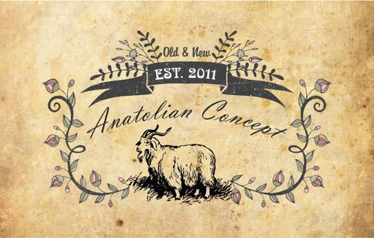 anatolian concept  アンカラ日記